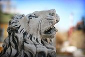 picture of lions-head  - Head of stone lion statue in town ambience - JPG