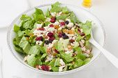 picture of romaine lettuce  - Salad in white bowl - JPG