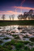 pic of wetland  - Wetlands landscape puddles of water after sunset in rural countryside - JPG