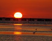 pic of skyway bridge  - sun setting on sunshine skyway bridge light traffic with birds wading in the surf - JPG
