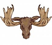 picture of stuffed animals  - Illustration of a Stuffed Moose Head Hanging Placed on the Wall - JPG