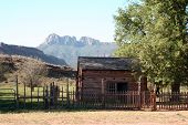 The Old Mountain Cabin