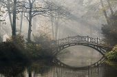 stock photo of old bridge  - Old bridge in misty autumn park - JPG