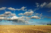 foto of hayfield  - Summer landscape with hayfield and blue sky - JPG