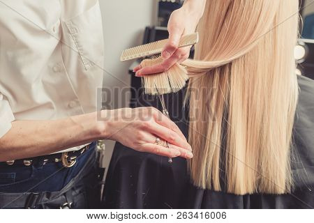 poster of Hairdresser Is Cutting Long Hair In Hair Salon