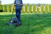 Teen Boy Mowing Lawn Grass In Yard With Lawnmower Decorative Plants Thuja Hedge And Pine Forest On B poster