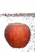 fresh juicy red apple,in water