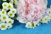 pic of feverfew  - Peonies and feverfew covered with water droplets in a springtime bouquet - JPG