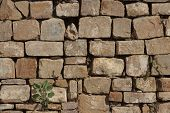 Stone wall texture of Mayan ruins in mexico