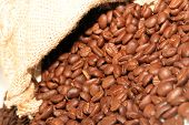 Coffe Beans In Sack
