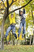 boys hanging from branch of tree