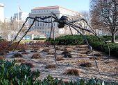 Spider-Giant.
