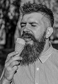 Chilling Concept. Man With Beard And Mustache On Calm Face Eats Ice Cream, Nature Background, Defocu poster