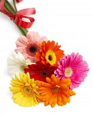 picture of floral bouquet  - beautiful bouquet of colorful gerbera flowers - JPG