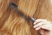 woman combing long blond wavy hair, beauty salon