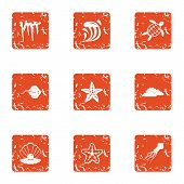 Starfish Icons Set. Grunge Set Of 9 Starfish Vector Icons For Web Isolated On White Background poster