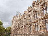 pic of kensington  - The Natural History Museum on Exhibition Road - JPG