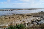 Coastal View at Low Tide