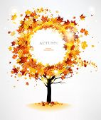 stock photo of dead plant  - Autumn tree with beautiful flying leaves with space for text - JPG