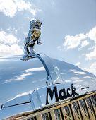 Mack B61 bulldog