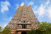pic of meenakshi  - Menakshi Temple Madurai - JPG