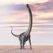 Dinosaur Puertasaurus