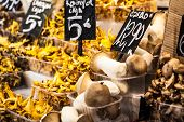 Mushrooms At A Stand In The Boqueria Market, In Barcelona, Spain.