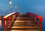 Python Bridge in Amsterdam
