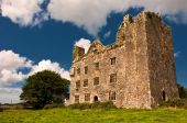 picture of irish moss  - photo old irish castle in the west of ireland - JPG