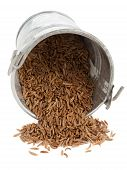 Caraway Seeds In Little Bucket