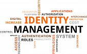 Word Cloud - Identity Management
