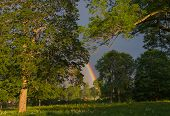 picture of end rainbow  - The end of the rainbow lands between the trees - JPG