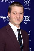 LOS ANGELES - JUN 7:  Benjamin McKenzie at the 13th Annual Chrysalis Butterfly Ball at Private Mandeville Canyon Estate on June 7, 2014 in Los Angeles, CA