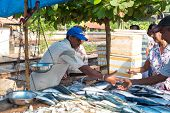 HIKKADUWA, SRI LANKA - FEBRUARY 23, 2014: Local street vendor selling fish. The Sunday market is a f
