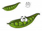 Fresh green cartoon peas in a pod