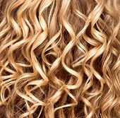 stock photo of perm  - Curly blonde hair closeup - JPG