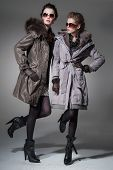 young attractive two girl wearing fur coat on gray background studio shot
