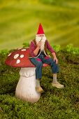 Real life garden gnome sitting on a toadstool