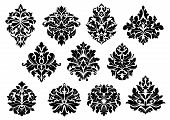 Set of floral and foliate floral motifs