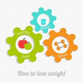 Colorful Cogwheel Gear Set With Water, Apple, Dumbell. Healthy Lifestyle Concept. How To Lose Weight