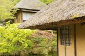 Thatched roof of the house in Kyoto.
