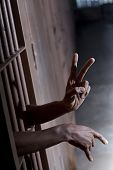 Peace Sign From A Jail Cell