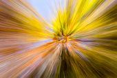 Autumn Colors - Bokeh Background, Texture, Motion Blur