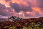 sunrise with pink purple orange clouds at Caradon Hill, Cornwall, UK