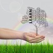 Concept or conceptual black education text word cloud or tagcloud as a tree on man or woman hand on rainbow sky background and grass