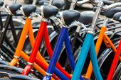 New bicycles for sale or rent in the store