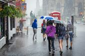 image of rain  - Group of girls hurry at the rain with umbrella in the city - JPG