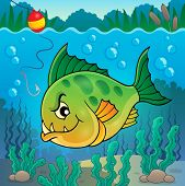 picture of piranha  - Piranha fish underwater theme 1  - JPG