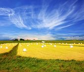 picture of iceland farm  - The farm and different economic constructions is in the distance visible - JPG