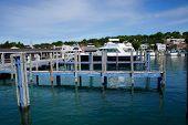 pic of municipal  - Boat Slips at the Harbor Springs Municipal Marina - JPG
